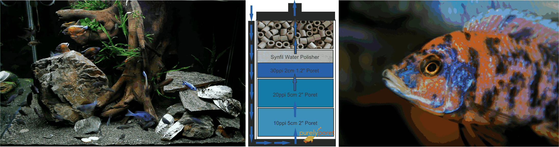 Poret Foam Is A Replacement For Your Fluval Canister Filter External Aquascape An Excellent Choice Replacing The Mechanical Stages Of Filters In Fact Blue Found Every Eheim